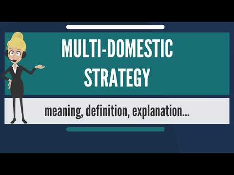 What Is Multi-domestic Marketing Strategy